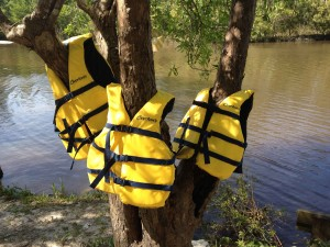 These three life jackets floated down the bayou one day like three little yellow ducklings.  I left them on this tree in case anyone wanted to claim them, but no one came calling.