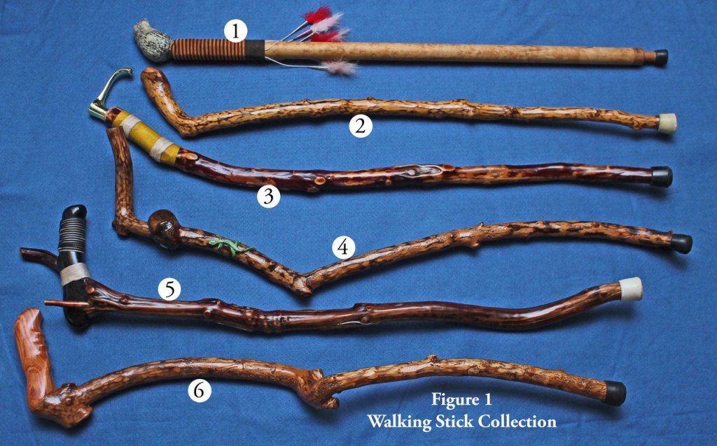 Fig 1 Walking Stick Collection-2 copy_edited-1